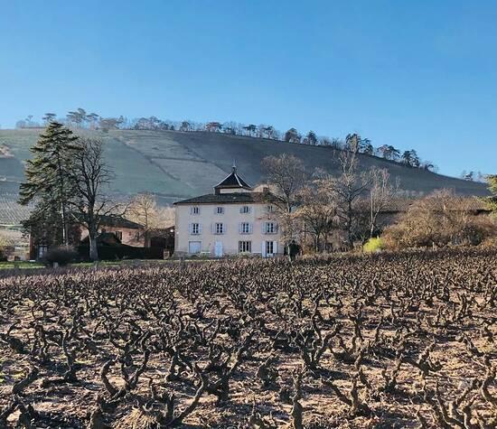 Château des Moriers l'hiver