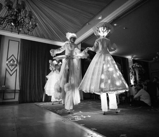 Les échassiers lumineux ©photos Songes Dorés - utilisation et reproduction interdites sans autorisation