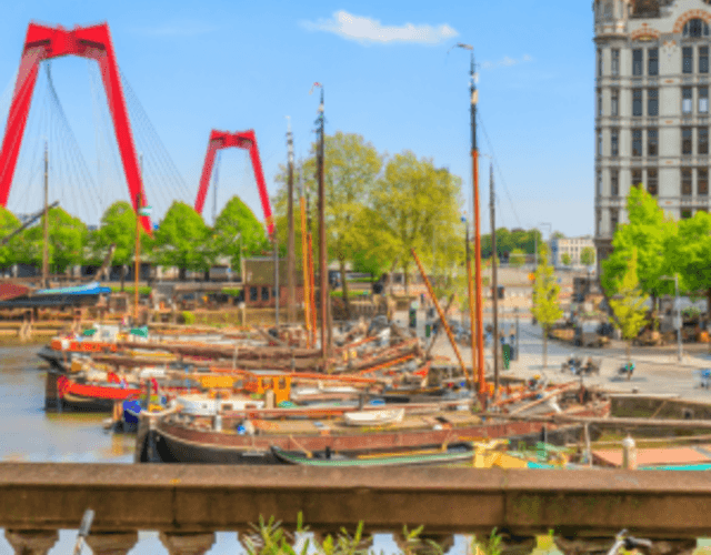 Les meilleurs prestataires pour votre mariage - Zuid-Holland
