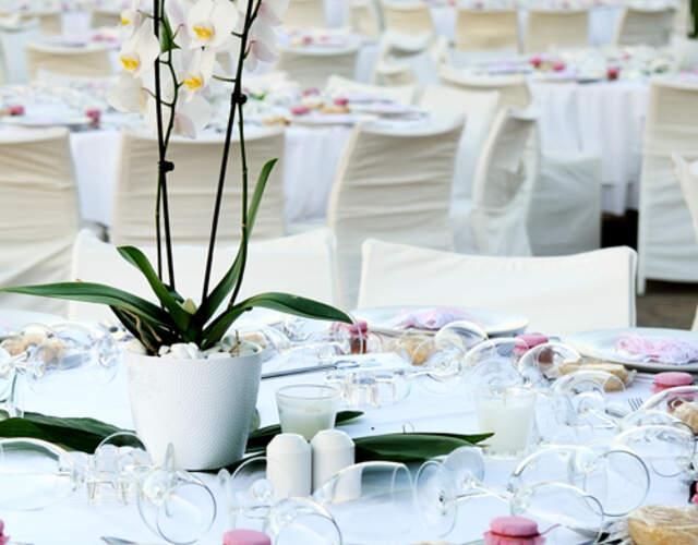 Hôtels pour mariage - Avignon